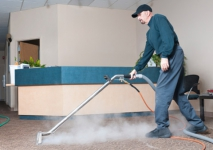 Finding A Cleaner For Your Domestic Cleaning Chores